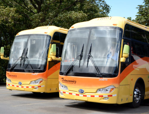 Nuevos Buses 2017